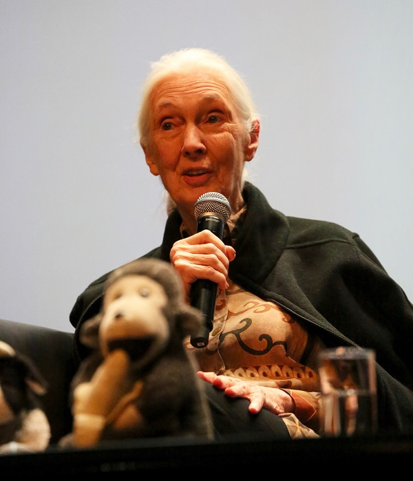 Jane Goodall in Singapore for Jane Goodall Institute (Singapore)'s 10th Anniversary celebrations. Photo by JGIS.