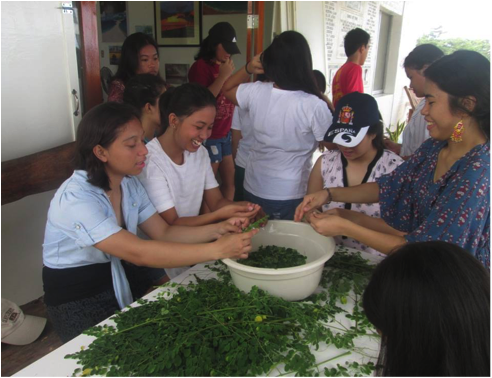 At the SEA CAMP in Barangay, youths learn how to cook what they farm and harvest as with this malunggay.Photo by June Lavil Quinanola.