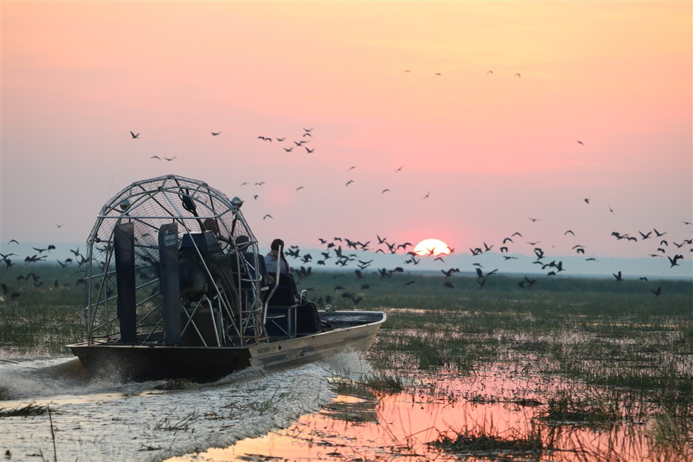Bamurru wetlands is home to hundreds of beautiful and impressive bird species. Photo courtesy of Bamurru Plains.