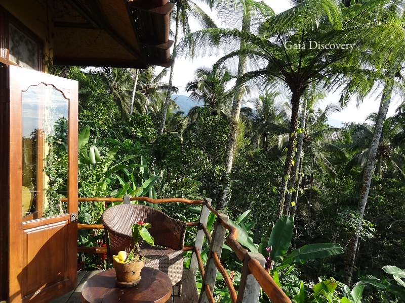 Close to nature, Sarinbuana Eco Lodge bungalows offer views of the food forest on Mount Batukaru.