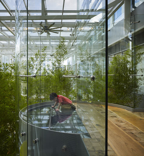 Kim's Crown Skygarden appeals to children - and adults. Courtesy Mikyoung Kim Design