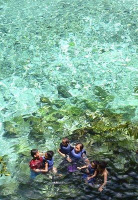 Just around 600m away from Hinatuan Bay lies the clear Enchanted River.