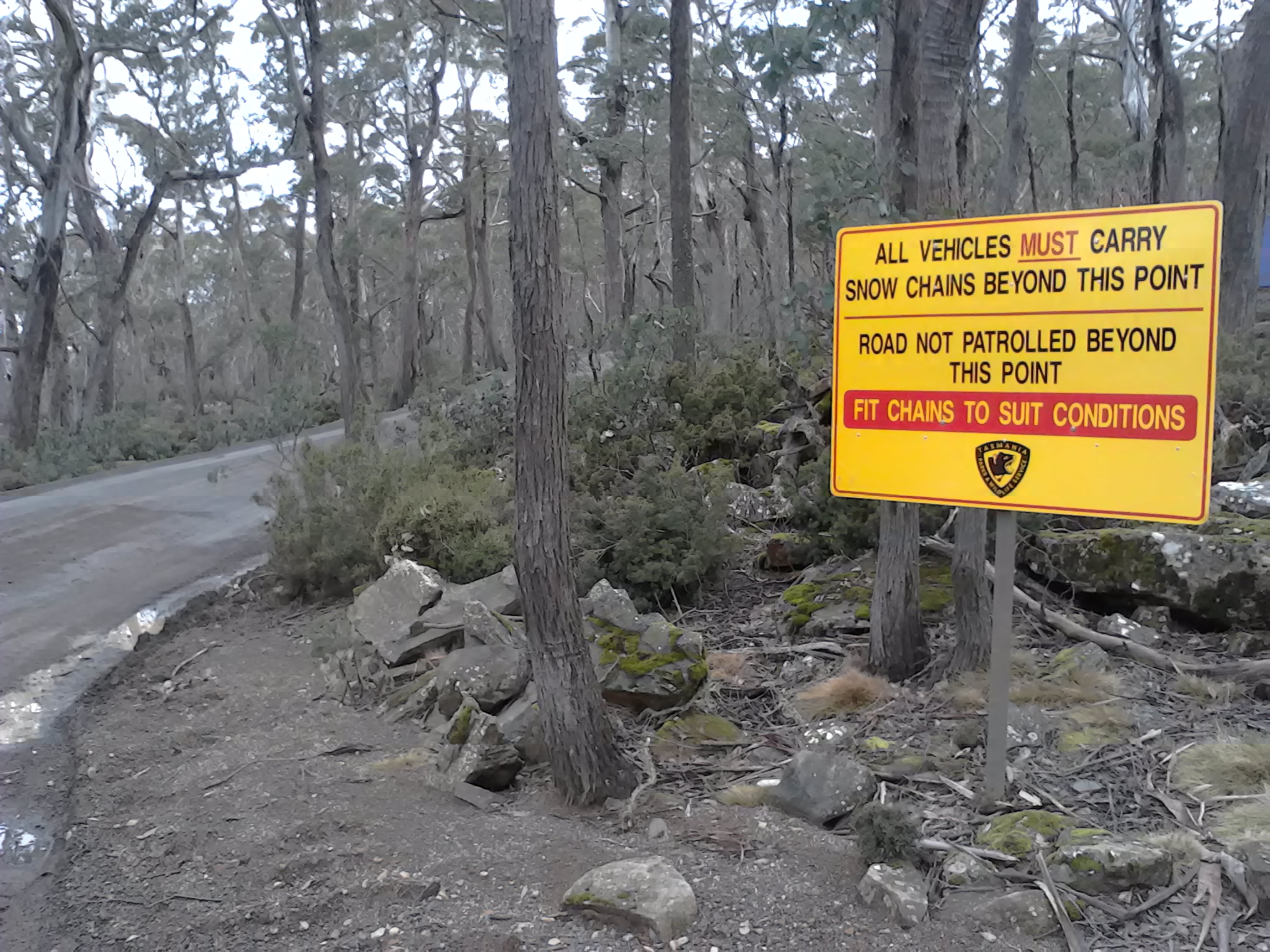 Driving in Tasmania is not without its own challenges. Photo Gaia Discovery