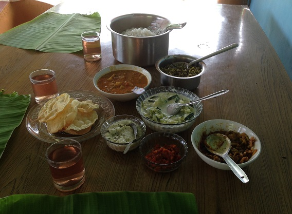 Delectable South Indian food is offered to SaveAGram guests where vegetables and fruit are harvested from their own garden or local markets.