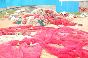 Once collectd, sorted and bagged, the waste nets are reprocessed, ready for remoulding. Courtesy DSM.