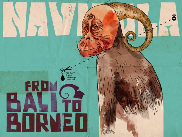 gaiadiscovery-Navicula-Kalimantan-Tour-Save-Rainforests-Save-Orangutans-Now-4-2215646-19440389-thumbnail.jpg