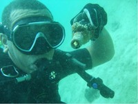 Used lightbulb retrieved by Mermaids Dive Centre in Thailand