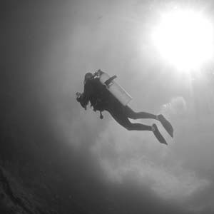 gaiadiscovery-WinDives-3-staff-similan-khao-lak.jpg