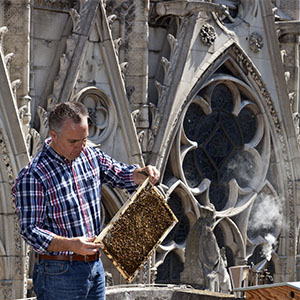 Nicolas Geant has tended bees on Notre Dame's roof for six years. Courtesy Beeopic.