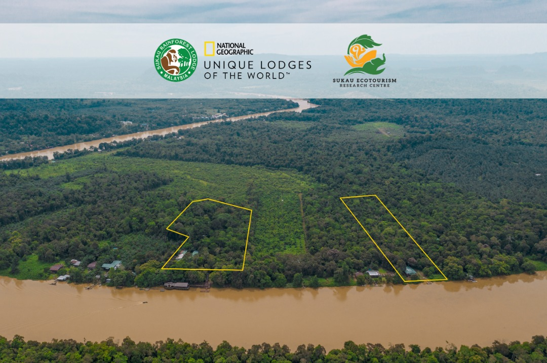 The 7.7 acres forested land that houses the Sukau Ecotourism Research Centre or SERC (right) is part of a long-term strategy on understanding ecosystems better including people-animal conflict. It is close to Albert Teo's Sukau Rainforest Lodge (to the left).