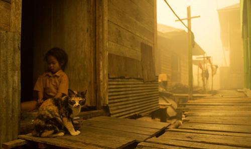 Major pollution from the 2015 fires crippled communities across SE Asia. Courtesy Ardiles Rante-Greenpeace