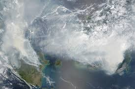Huge swathes of SE Asia were covered by rainforest burn smoke in 2015. Courtesy NASA.