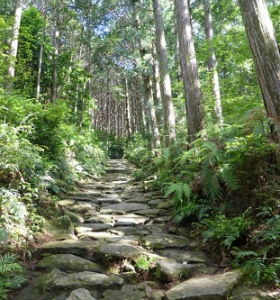 Over 1,000 years of footsteps. Courtesy Kumano JP