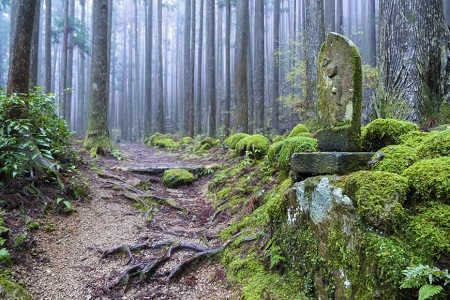 There are still dozens of shrines on the Kumano trails. Courtesy UNESCO