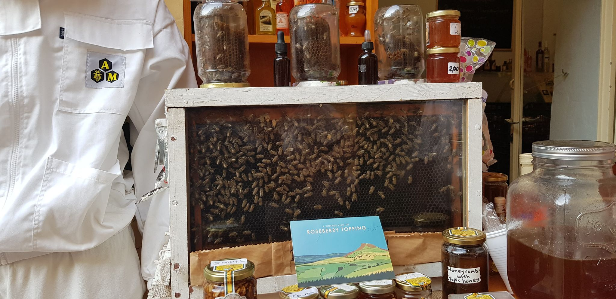 bee farm in corfu.jpg