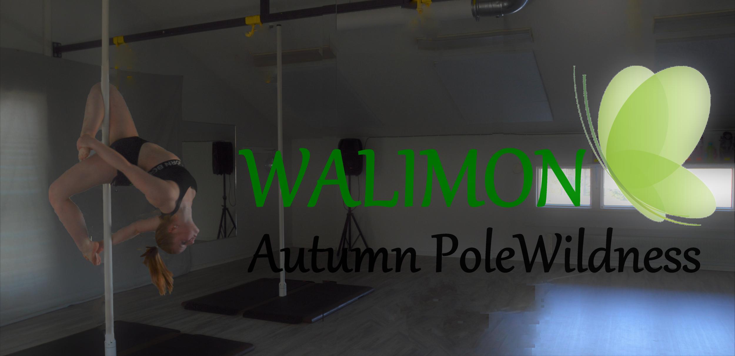 Walimon Autumn PoleWildness kansikuva kotisivuille.png