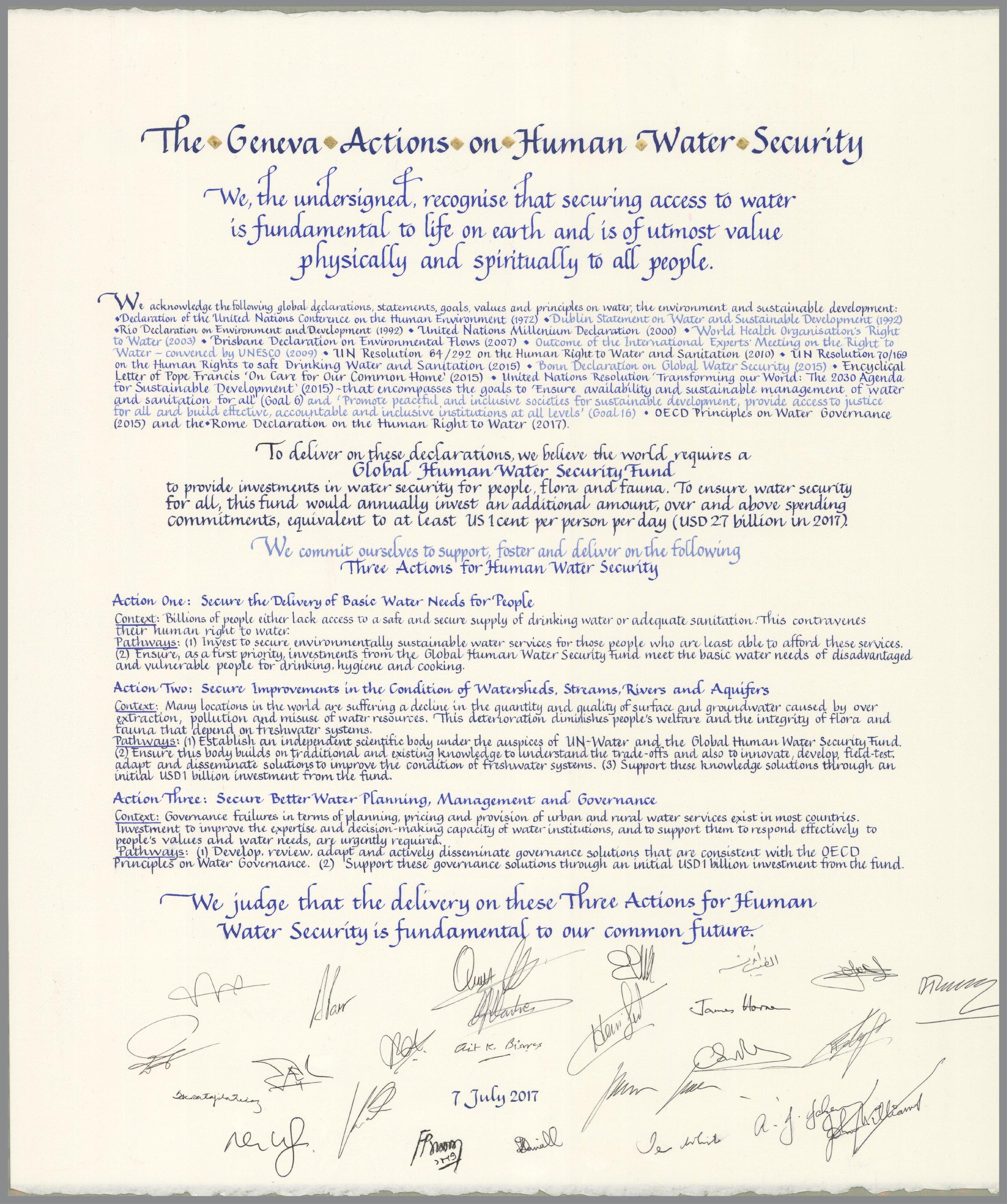 Geneva Action_Signed_medium.jpg