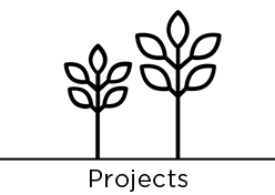 URBAN_TREE_promo_projects.png