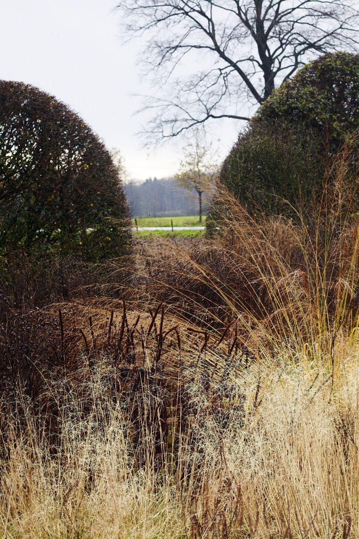 oudolf-garden-aprilandmay-3.jpeg