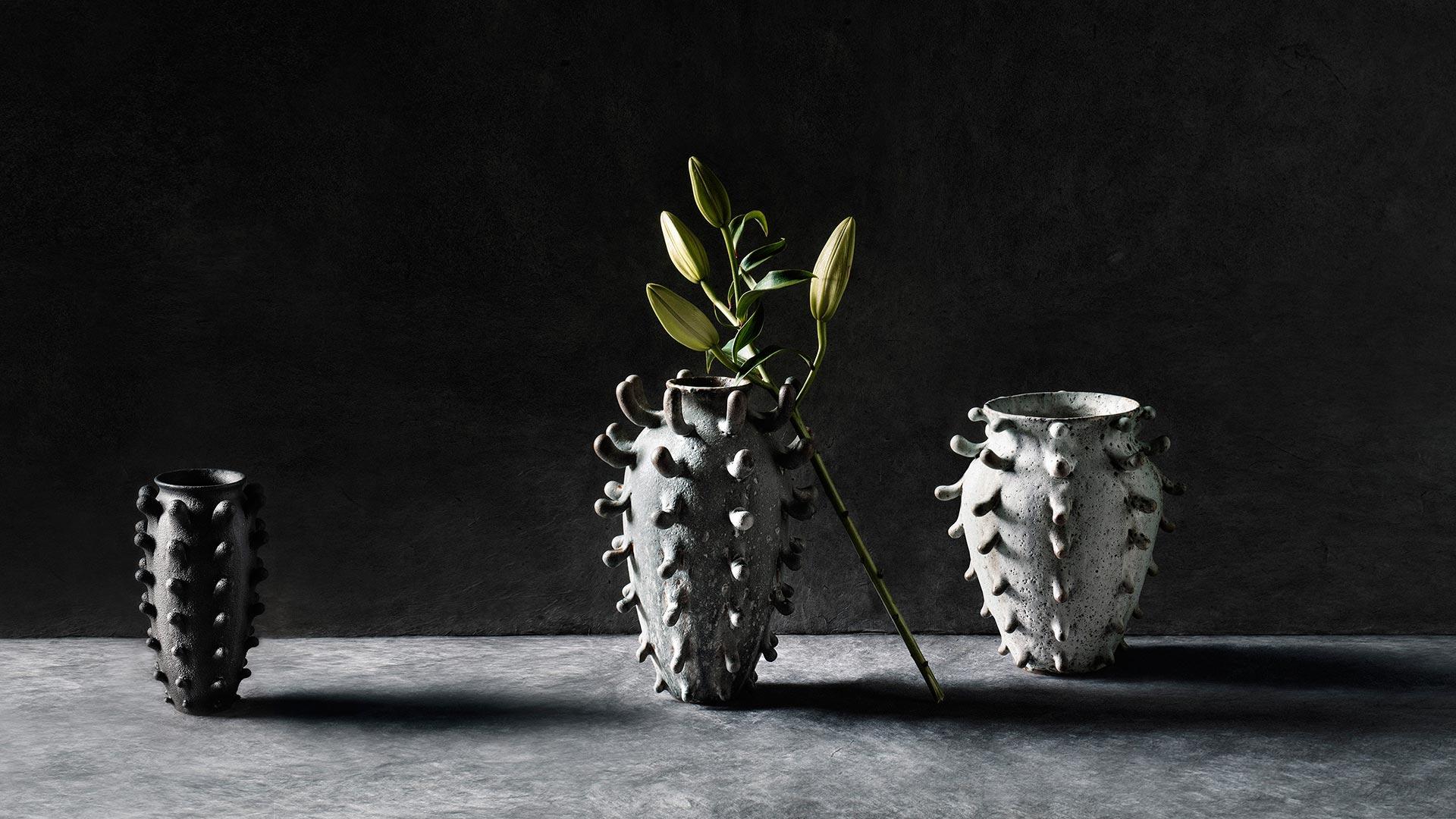 Granite-Sprouting-Vase-Black-Studded-Vessel-Crater-Vase-2018-1920-x-1080-smaller.jpg