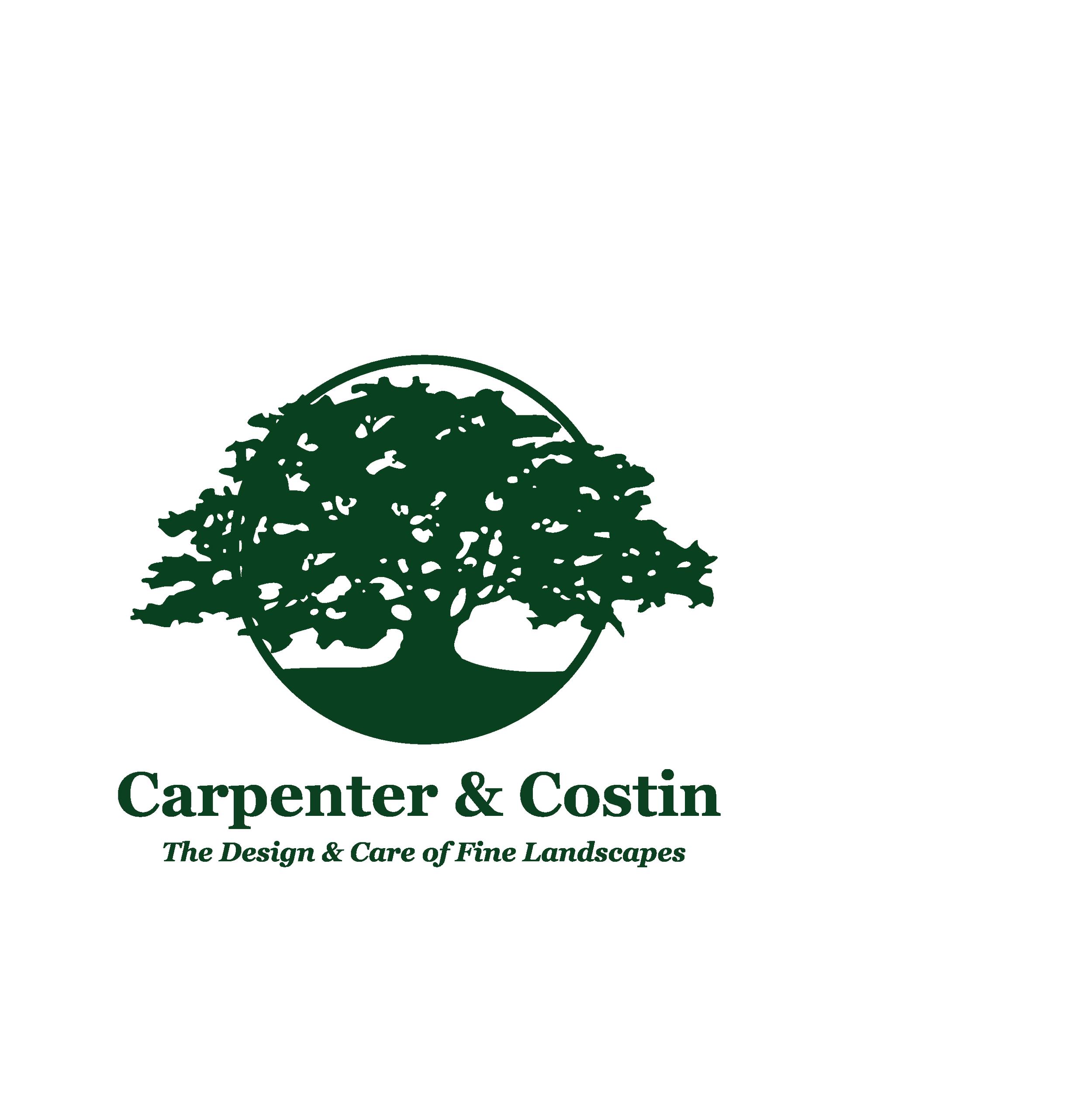 Carpenter Costin  - LOGO (1).png