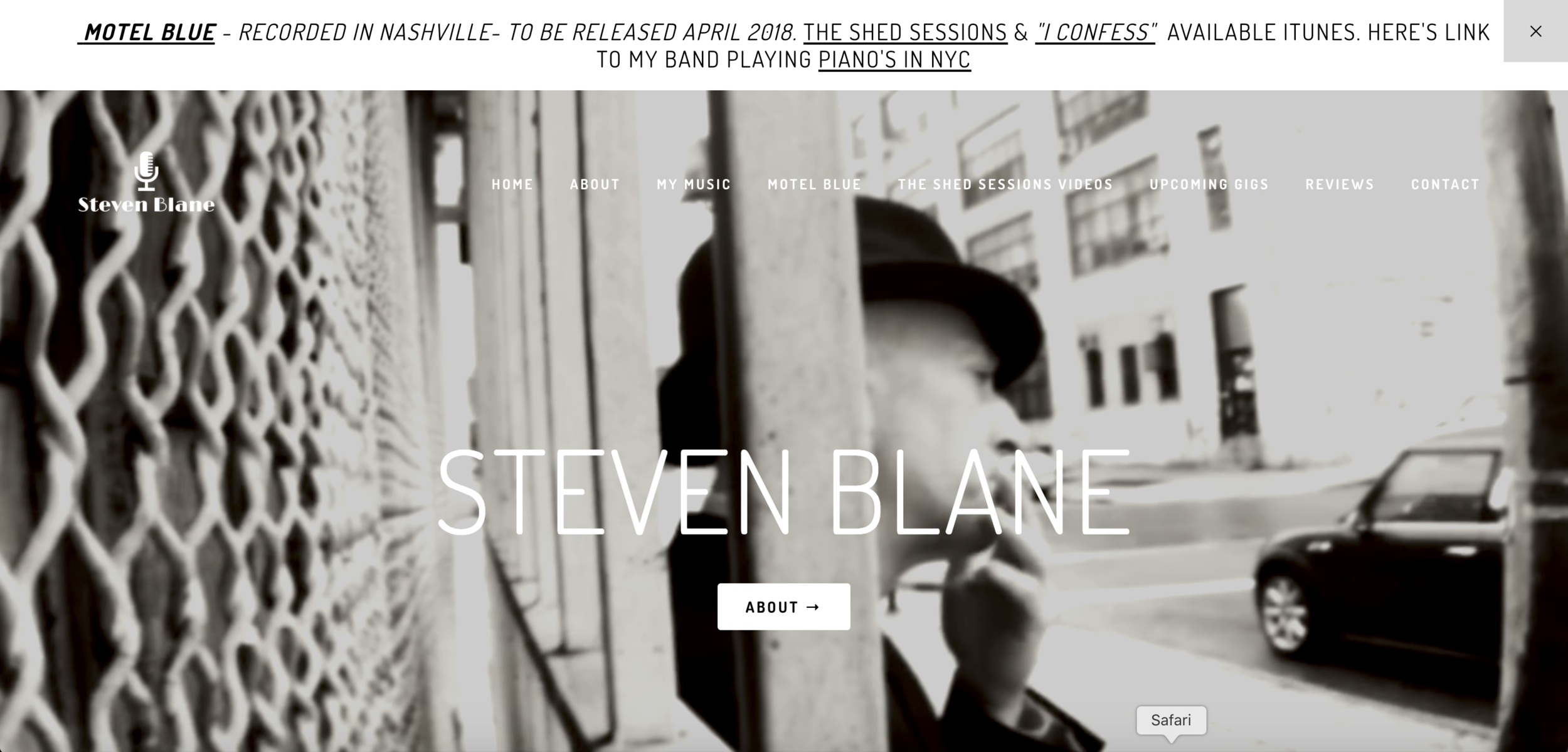 Steven Blane - American singer/songwriter. Needed to revamp his current site in order to grow his audience prior to his new album release.