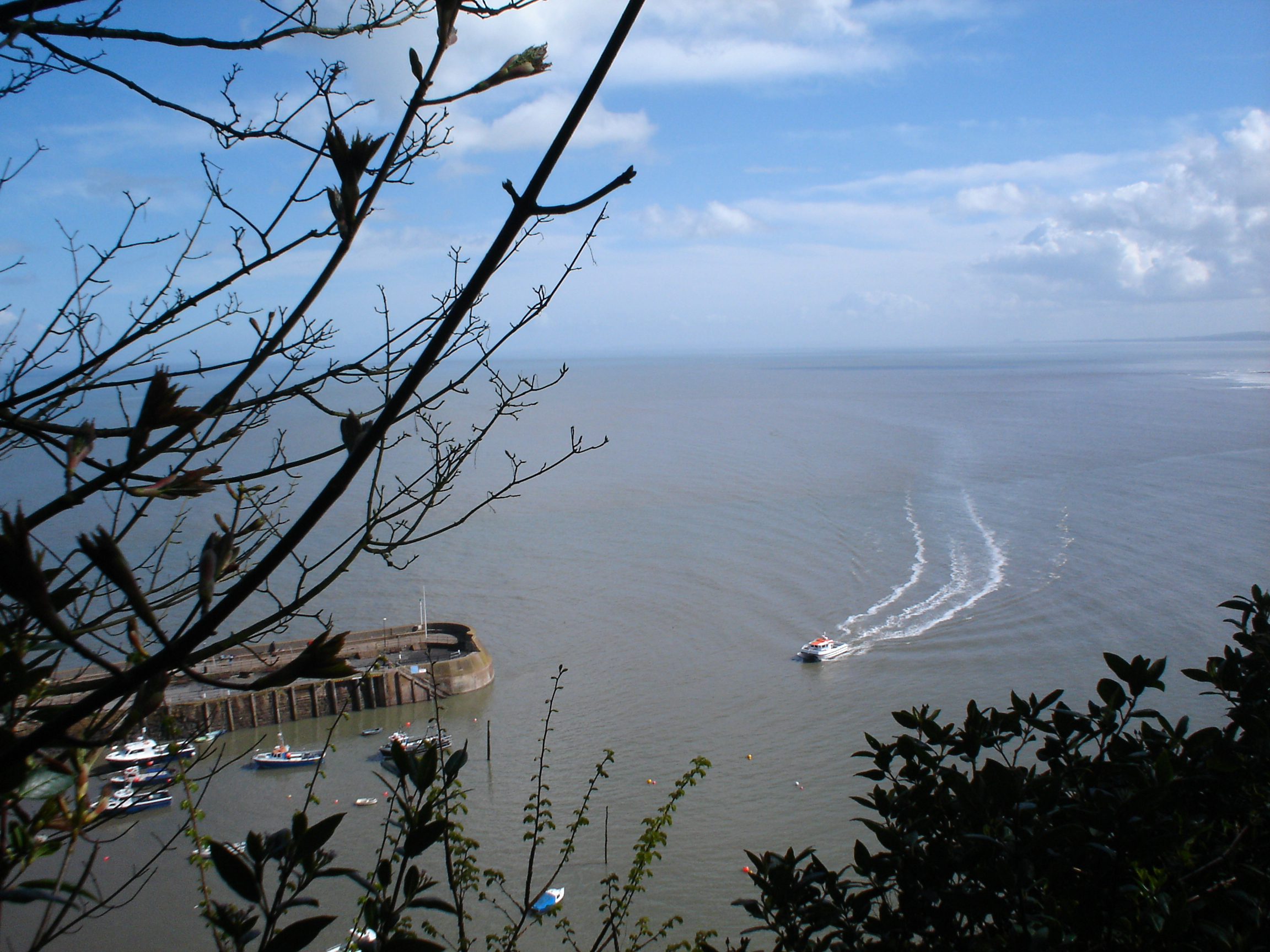 Minehead Harbour is visible from leafy North Hill.