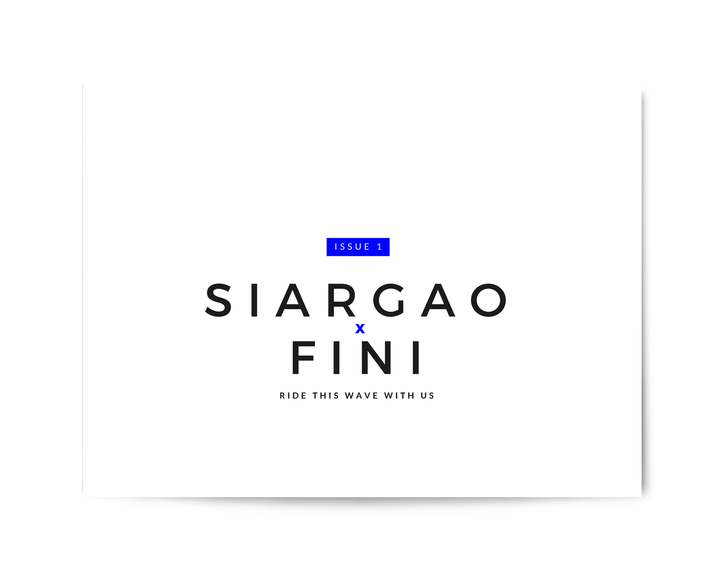 fini_040.png