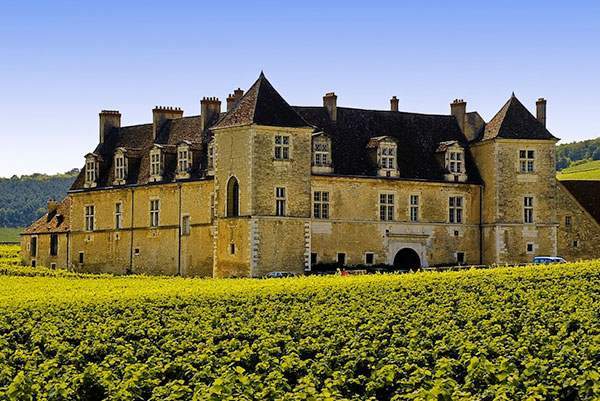 Private jet to Burgundy, France and go wine tasting.