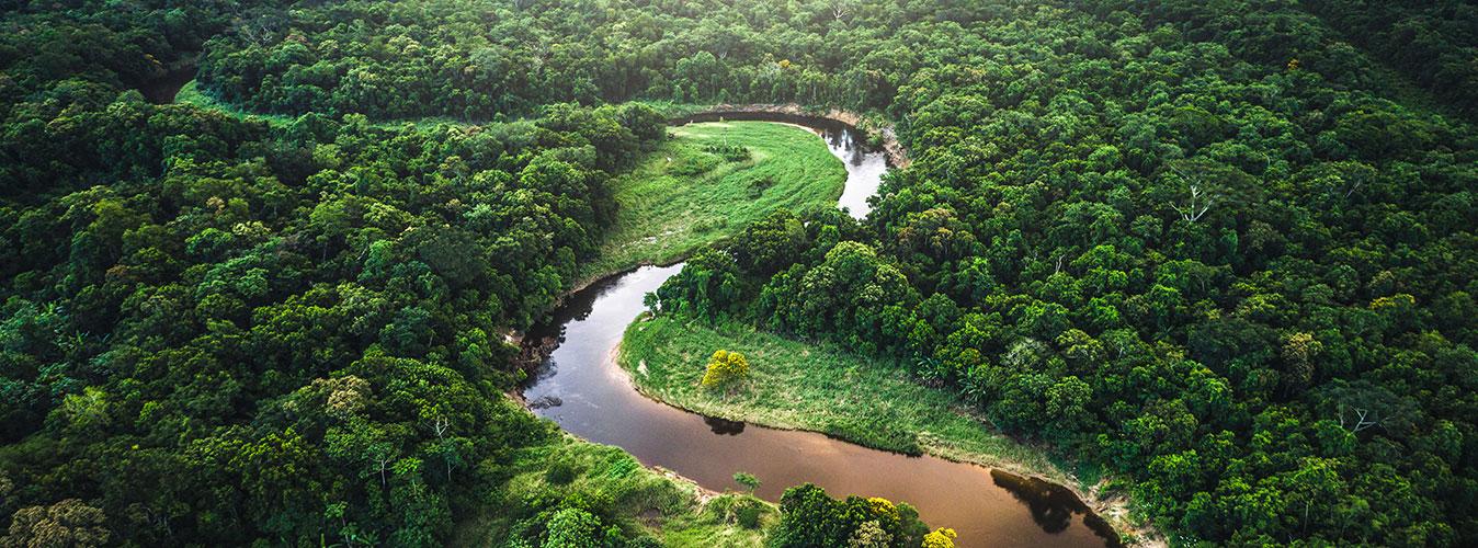 Private jet to the Brazilian Amazon rainforests