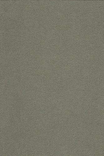 wool fabric tonus 613