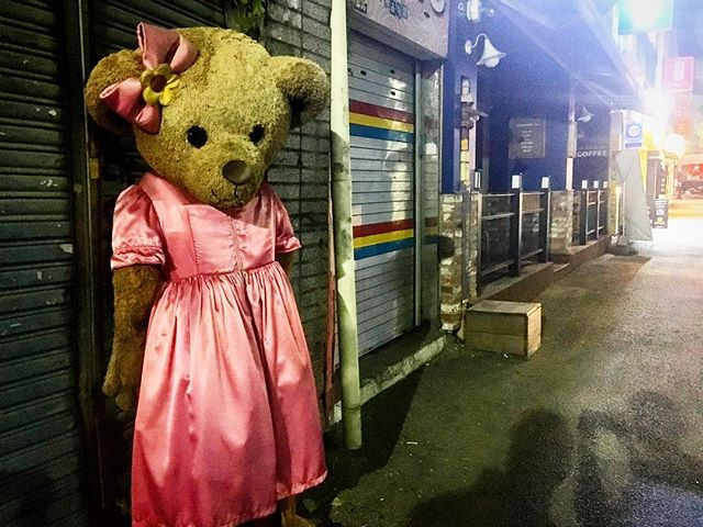 This morning at 11am we screen at @jeonju_iff for our Asian premiere!! In honor of our excitement here is a bear we found last night that's definitely NOT going to put a curse on your family!