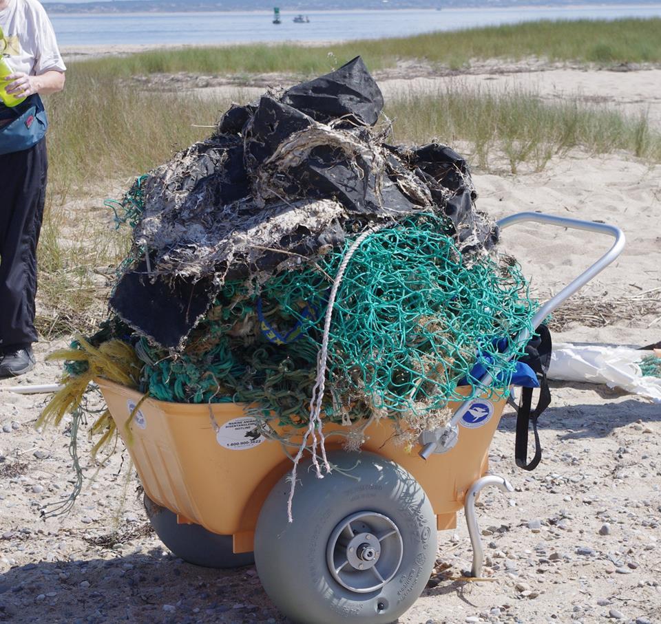 Marine Debris and Plastics