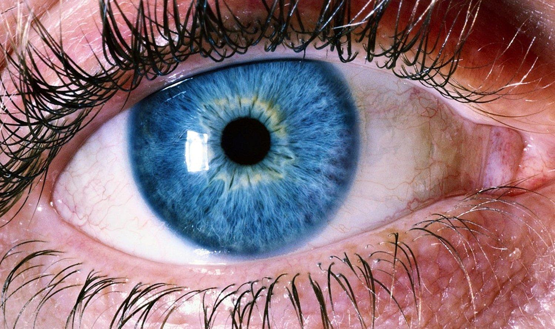 Blue_Eyes.jpeg