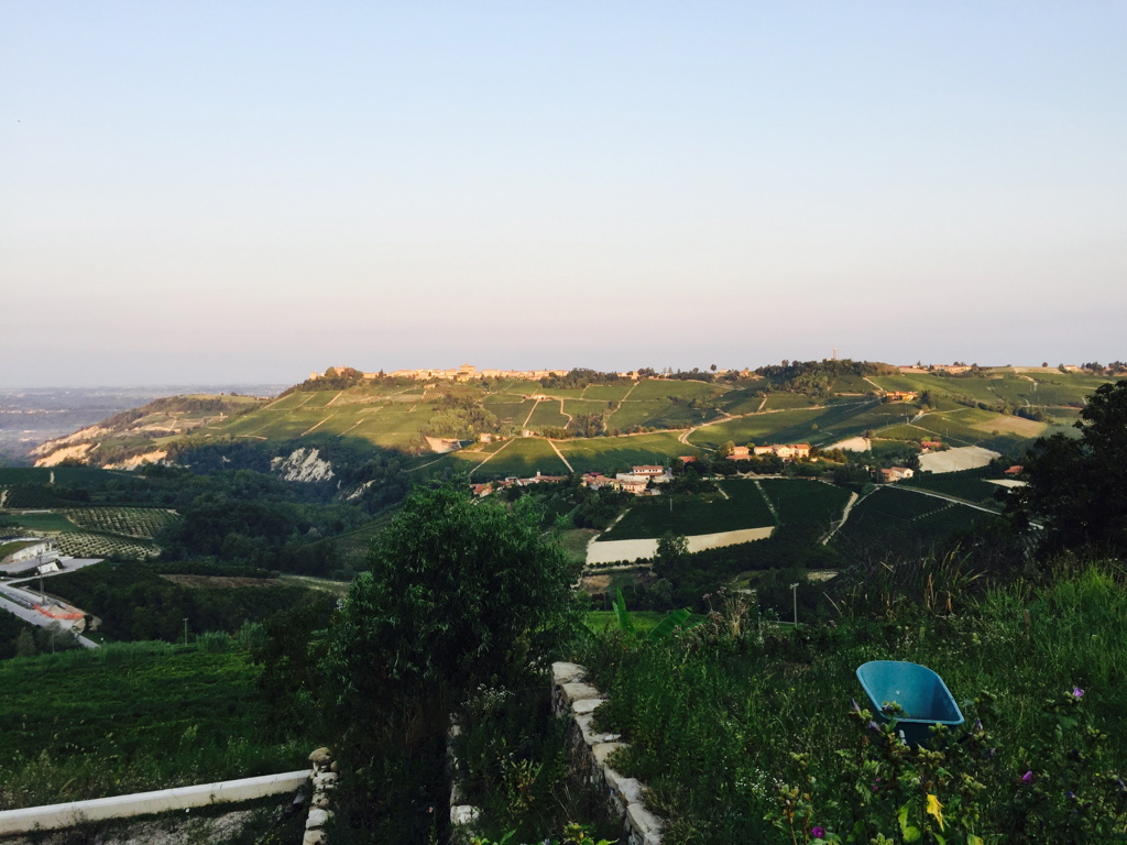 Barolo in the late evening