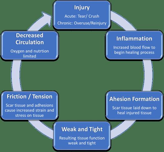 Cumulative Injury Cycle.png