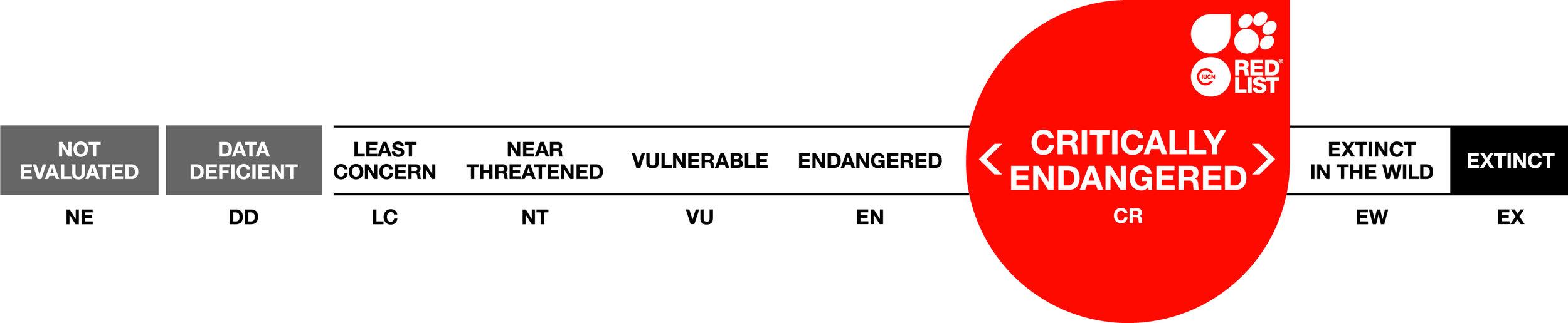 Threat Categories LONG_CR.jpg
