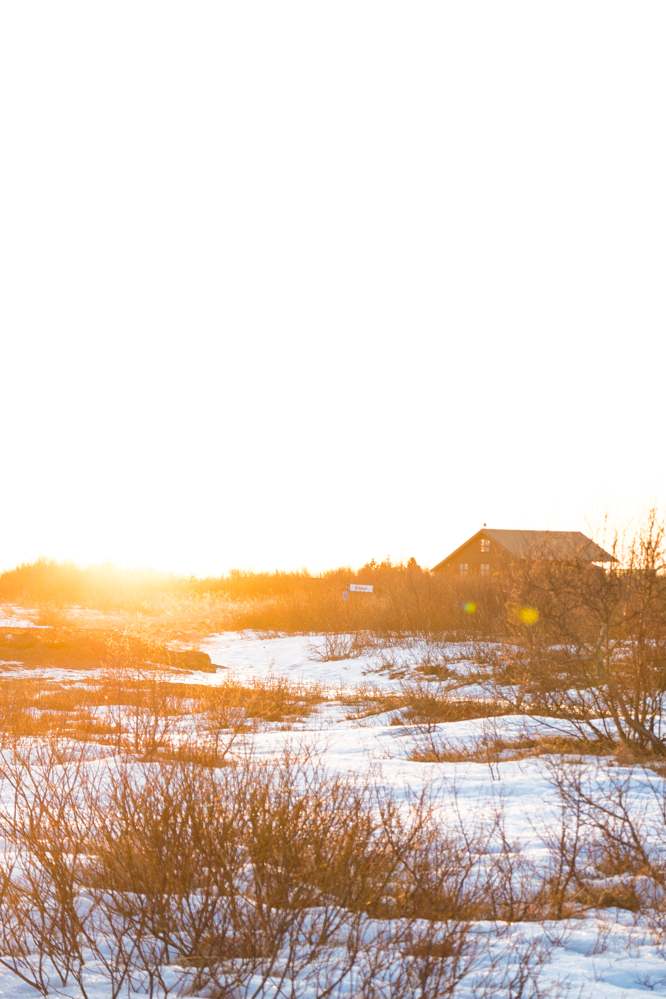 Landscape_photography_frozen-4.jpg