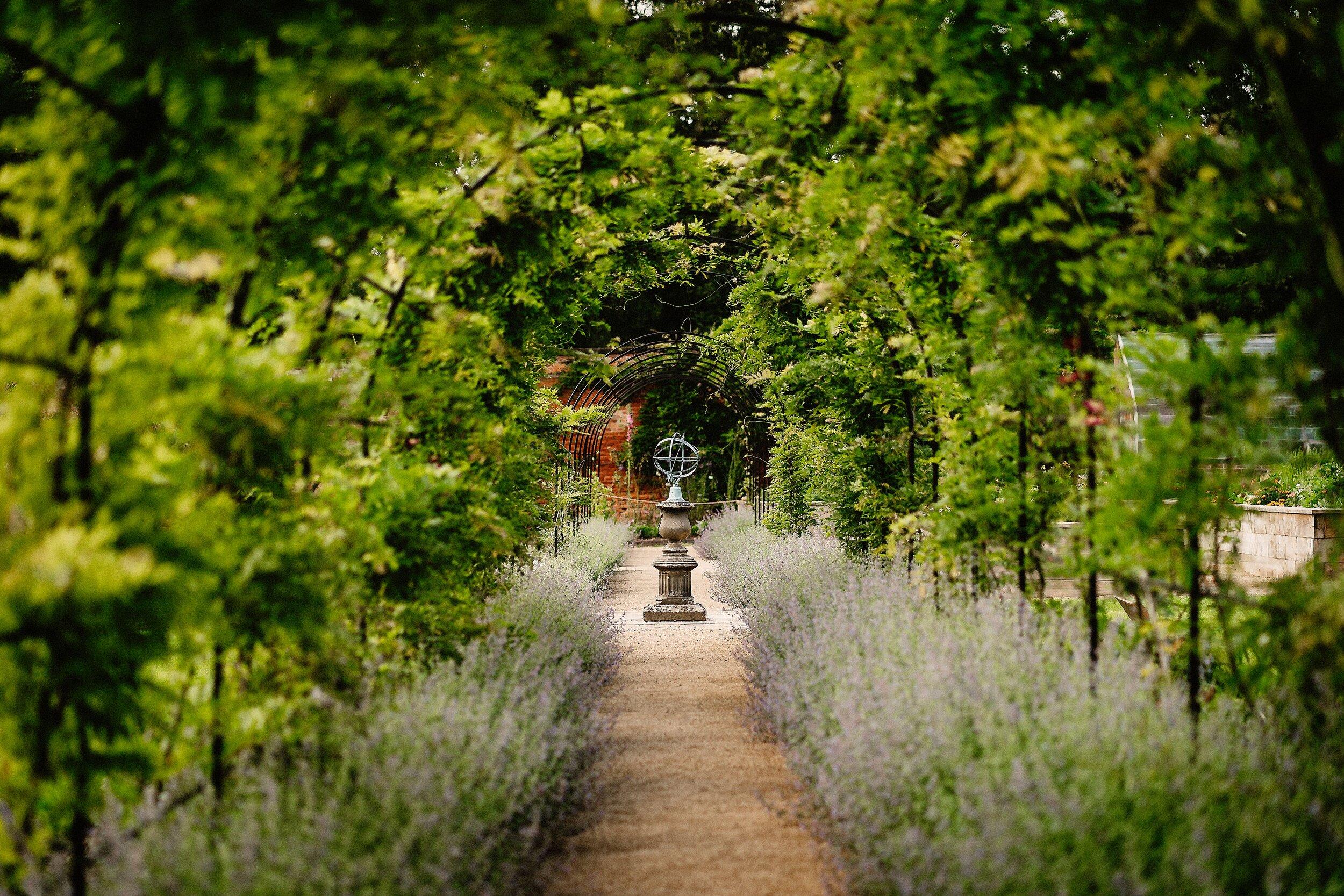 Thorpe Garden - Last of Light (Darren Gair) - Claire & David - 2.8.19 -190802 403.jpg