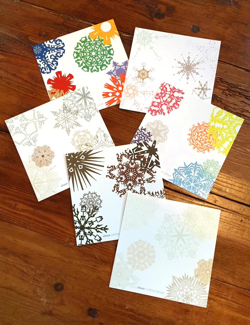 COLOR EVOLUTION Holiday Cards