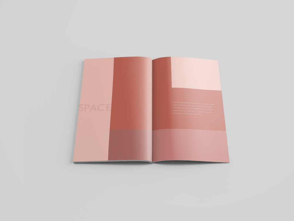 Notebook_spreads1.jpg
