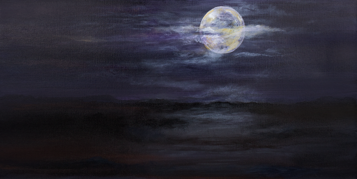 Super Moon Madness 10x20