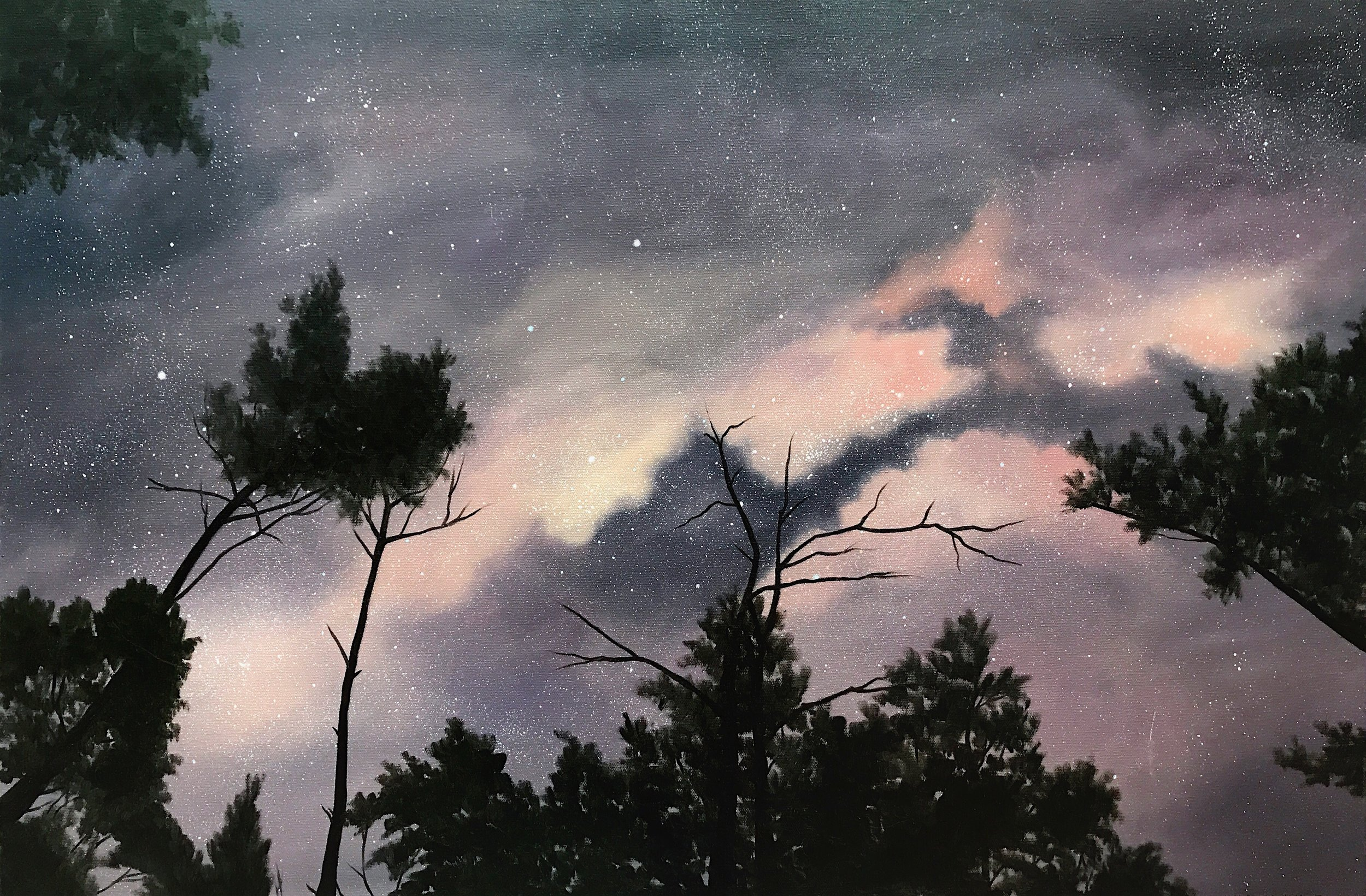 """Red River Gorge Night Sky,36""""x24"""", Oil Paint on Canvas, 2017"""