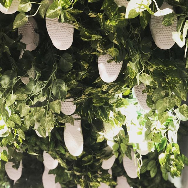 Air Jordans growing on trees... store is always on point @ronniefieg @snarkitecture @michilli.inc