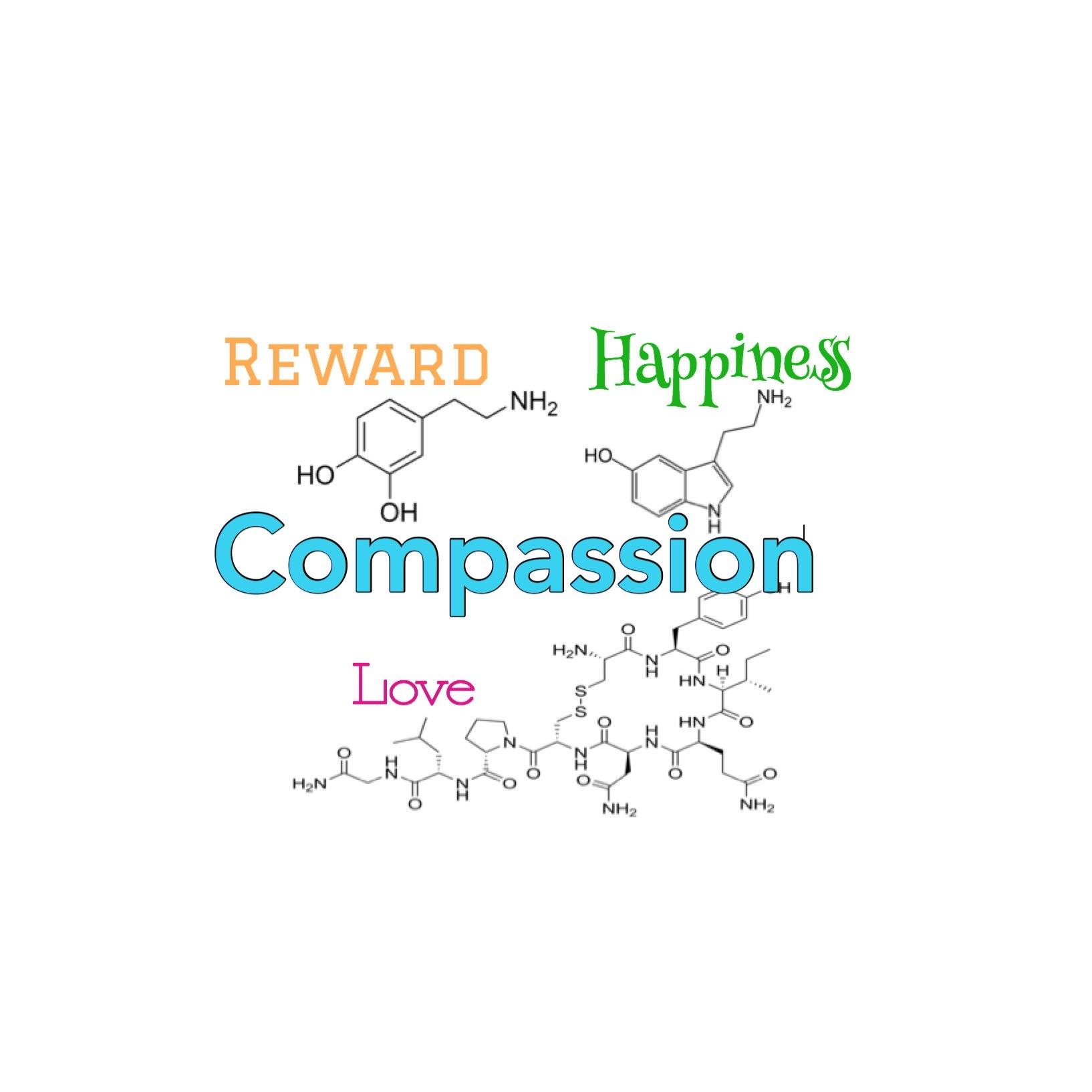 CMP Compassion structure.jpg