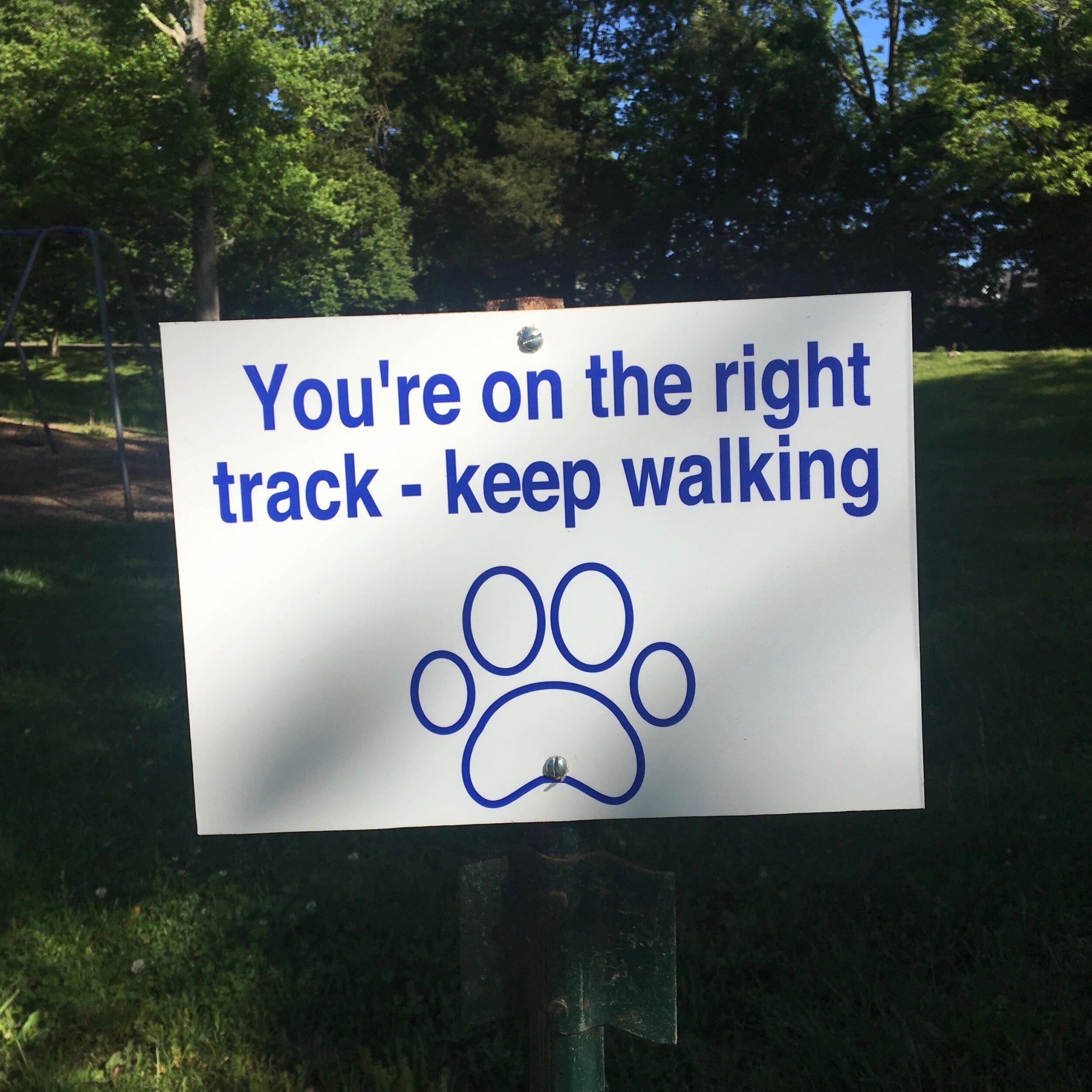 CMP Walking Meditation 9.22.19 b.jpg