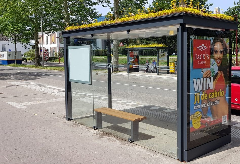 Bee-Friendly Bus Stops!