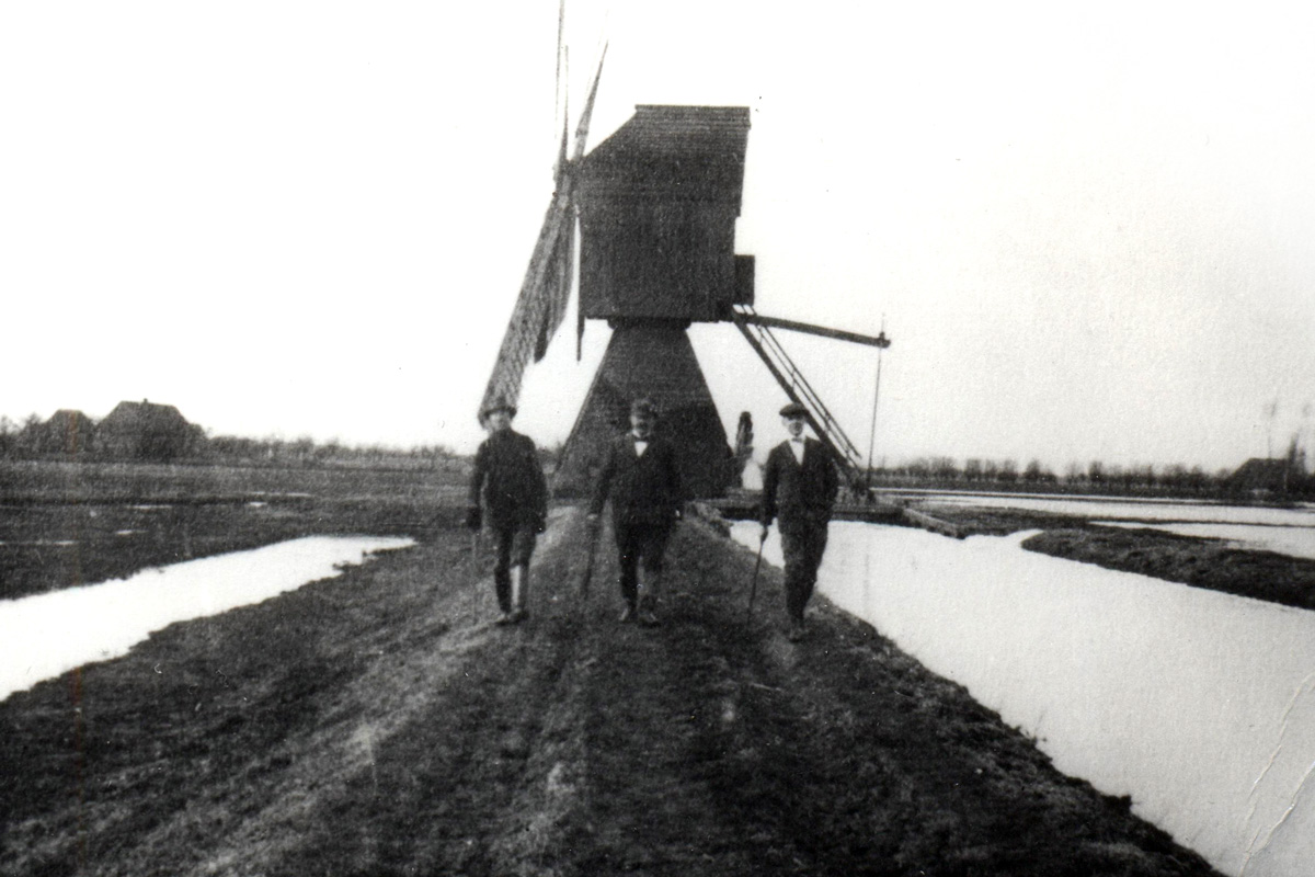 This windmill was used for draining land near a Mennonite settlement in the Vistula Delta (Poland). Background image: Lake Druzno in northern Poland (German: Drausensee). In the 16th century, Mennonites constructed a dam through the middle of the lake and eventually built villages and farmland on the former lake bottom.