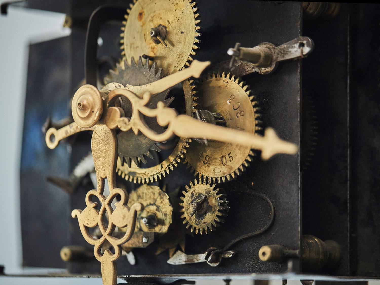 Complex  Mechanism