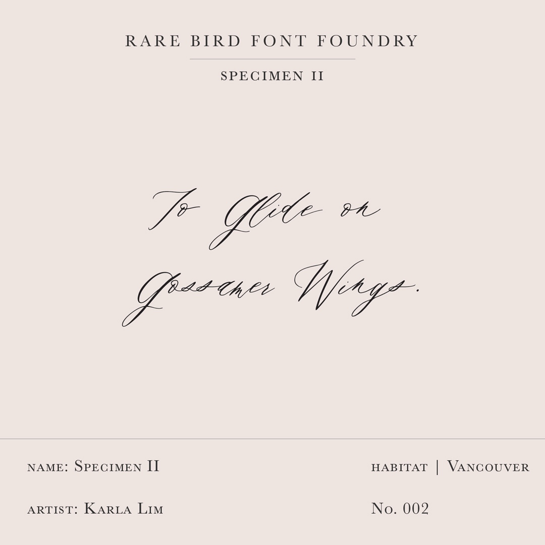 RARE BIRD SPECIMEN II LABEL